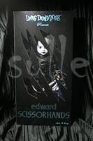 Edward Scissorhands (5)
